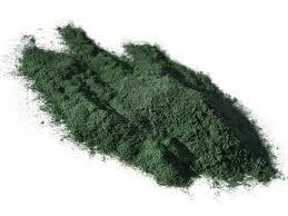 Egenskaper av algen Spirulina