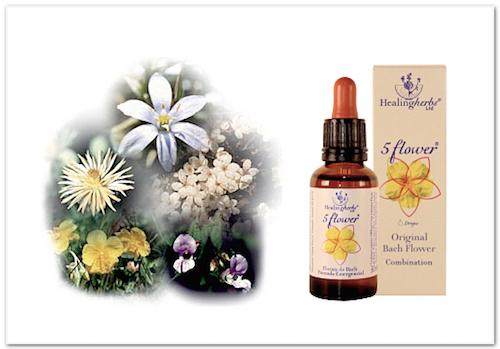 Five flower remedy - räddningsdroppar, akutdroppar