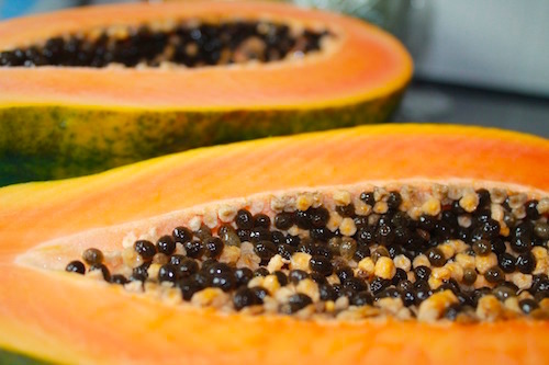 Papain i papaya