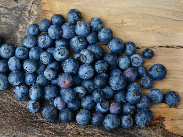 Blåbär - blåbärspulver och blåbärsextrakt som är bra för synen