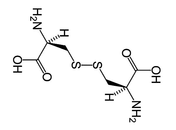 Aminosyran cystin