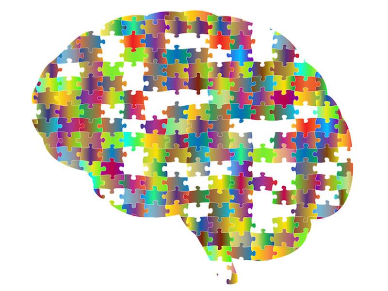 En stimulerad hjärna kan bidra till starkare immunförsvar