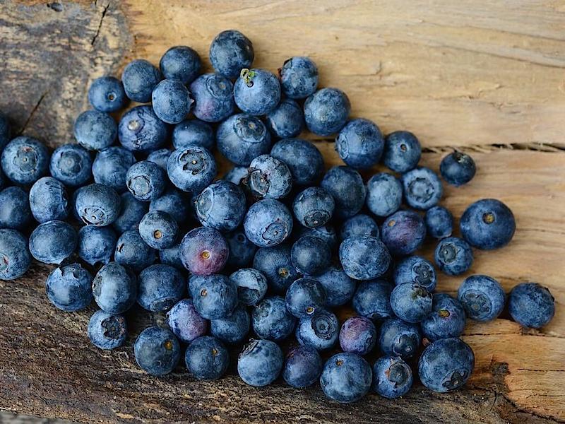 6 hälsofördelar med att äta blåbär!
