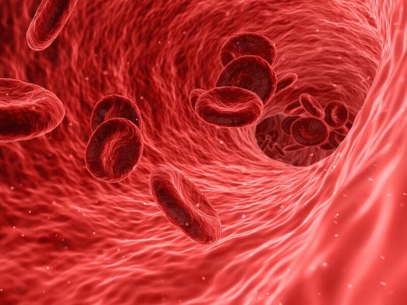 Ta kontroll över din hälsa med en blodanalys