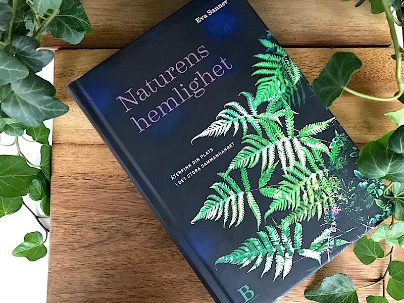 """Boken """"Naturens hemlighet : Återfinn din plats i det stora sammanhanget"""""""