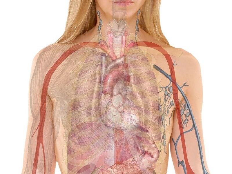 Vanliga tecken på trögt lymfsystem