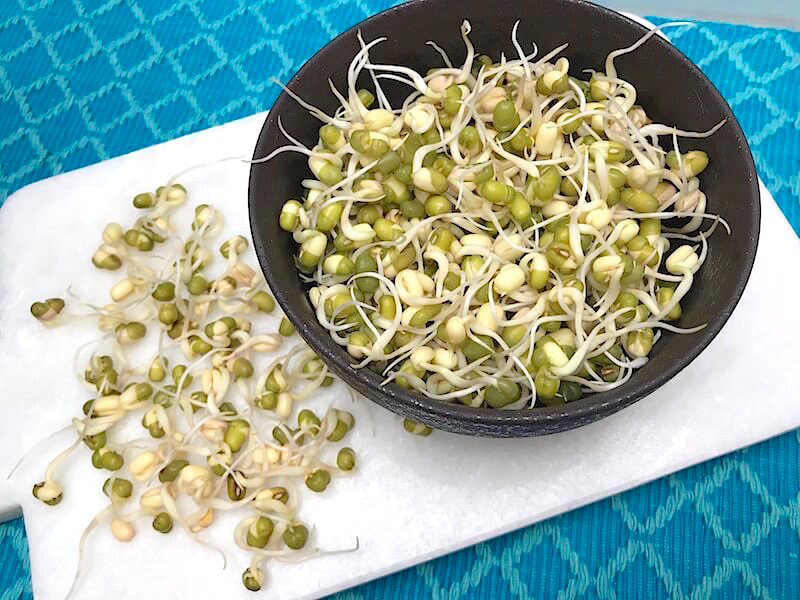 Att grodda mungbönor (böngroddar)