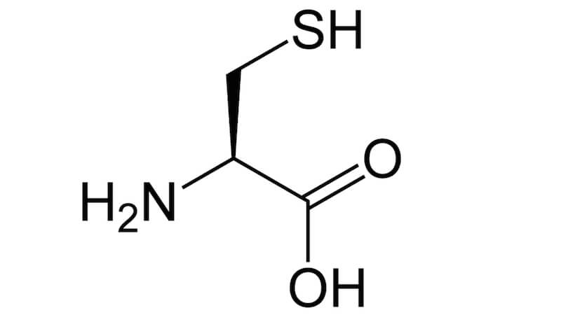 Funktion av aminosyran cystein