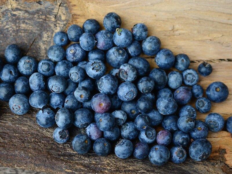 Blåbär som livsmedel och kosttillskott