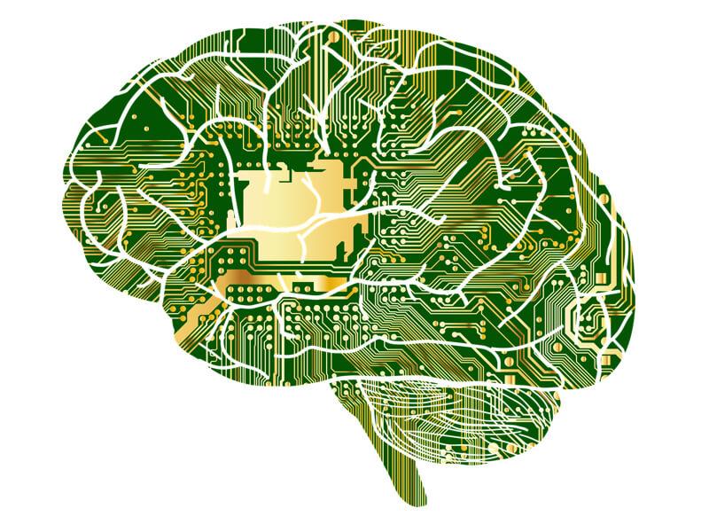 Funktion av Fosfatidylserin för hjärnan