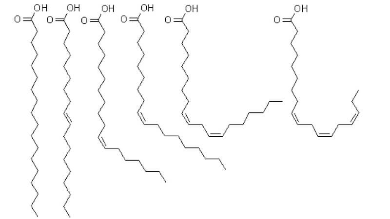 Fettsyrornas indelning