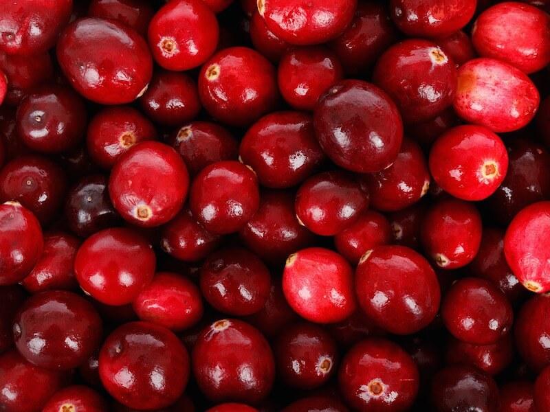 Tranbär som livsmedel och hälsokost